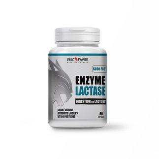 Enzyme Lactase